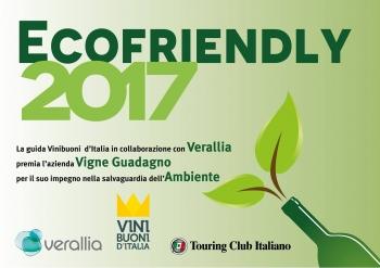 Diploma Ecofriendly ricevuto da Vini Buoni d'Italia in collaborazione con Verallia